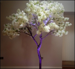 9ft Ivory Blossom tree with wireless uplighter to Hire| Rustic | Luxury | Bespoke |  Vingtage Wedding & Events | Carlisle | Cumbria | Lake District | Newcastle | Manchester